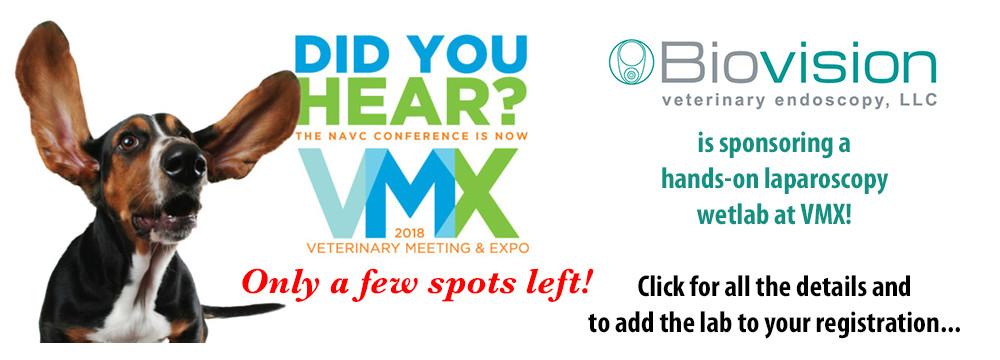 vmx-wetlab-2018-slide