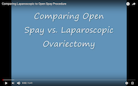 comparing_laparoscopic_spay_to_open_spay
