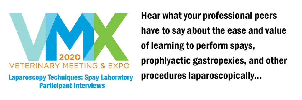 link to video interviews with vmx2020 laparoscopy wetlab participants